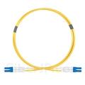 1m LC/UPC-LC/UPC デュプレックス シングルモード 光パッチケーブル(2.0mm PVC/OFNR OS2)の画像