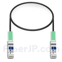 0.5m Avaya Nortel AA1404037-E6対応互換 40G QSFP+パッシブダイレクトアタッチ銅製ケーブル(DAC)の画像