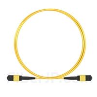 1m MPOメス 12芯 タイプB OS2 9/125 シングルモード トランクケーブル(エリート、LSZH、黄色)の画像