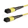 5m MPOメス 12芯 タイプA OS2 9/125 シングルモード トランクケーブル(エリート、LSZH、黄色)の画像