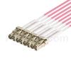 1m MPOメス-4LC/UPC デュプレックス 8芯 タイプB OM4(OM3) 50/125 マルチモード ブレイクアウトケーブル(エリート、LSZH、マゼンタ)の画像