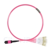 2m MPOメス-4LC/UPC デュプレックス 8芯 タイプB LSZHOM4(OM3) 50/125 マルチモード ブレイクアウトケーブル(エリート、マゼンタ)の画像