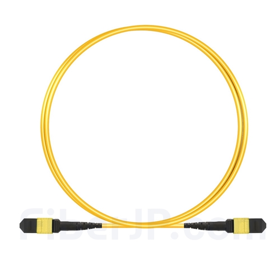 2m MTP-MTPパッチケーブル メス 12芯 プレナム(OFNP) OS2 9/125 シングルモード(タイプB、エリート、黄色)の画像