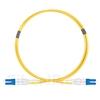 1m グレードB LC/UPC-LC/UPC デュプレックス シングルモード BIF光パッチケーブル(標準0.12dB IL、LSZH、OS2)の画像