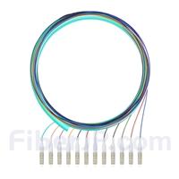1.5m 12芯 LC/UPC マルチモード ピッグテール光ファイバケーブル(0.9mm PVCジャケット、 50/125 OM4、束状)の画像